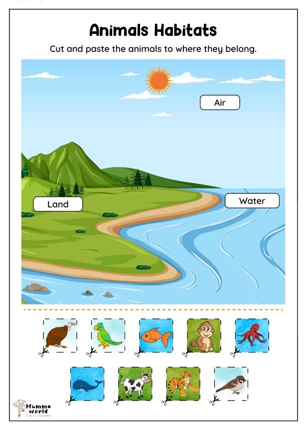 Animals Habitats Worksheet